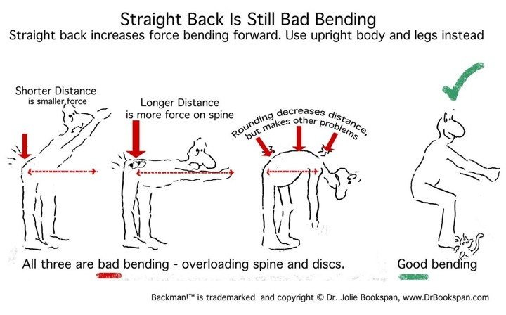 "ALT =[""Hip hinges are still bad bending. See why on Dr. Bookspan's web page of Healthier Yoga - http://drbookspan.com/WarriorYogaSyllabus.html]"